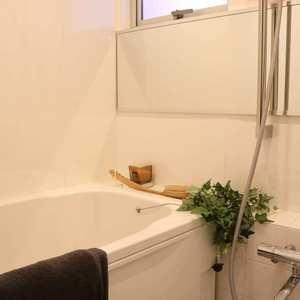 日興パレス文京(3階,)の浴室・お風呂
