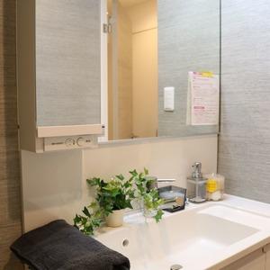 日興パレス文京(3階,)の化粧室・脱衣所・洗面室
