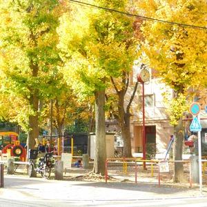 マイキャッスル小石川の近くの公園・緑地