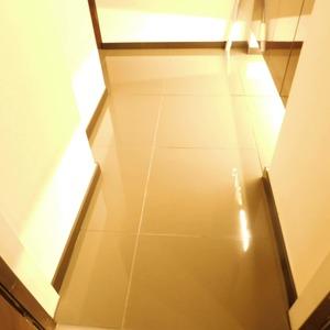 イトーピア渋谷桜ヶ丘(5階,)のお部屋の玄関