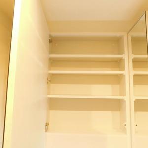 イトーピア渋谷桜ヶ丘(5階,)の化粧室・脱衣所・洗面室