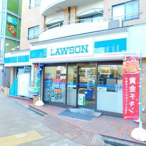 ルモン広尾の周辺の食品スーパー、コンビニなどのお買い物