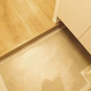 ニュータウンオークボ(14階,4497万円)のお部屋の玄関