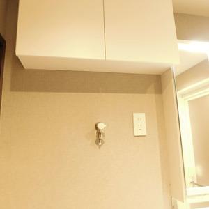 ニュータウンオークボ(14階,4497万円)の化粧室・脱衣所・洗面室