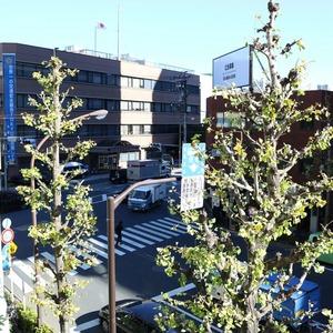 シティハイツ本郷(3階,)のお部屋からの眺望