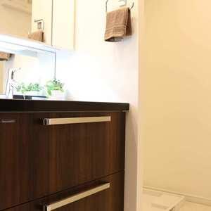 藤和シティホームズ本郷(4階,)の化粧室・脱衣所・洗面室