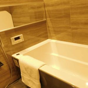 ナビウス目黒(7階,)の浴室・お風呂