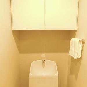 ニュー目黒台ハイツ(3階,)のトイレ