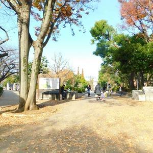 パークサイド小石川植物園の近くの公園・緑地