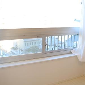 湯島ハイタウン(7階,)の洋室