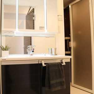 湯島ハイタウン(7階,)の化粧室・脱衣所・洗面室