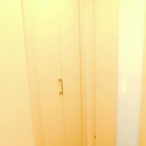 藤和目黒ホームズ(3階,)のお部屋の廊下