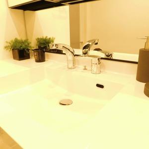 藤和目黒ホームズ(3階,)の化粧室・脱衣所・洗面室