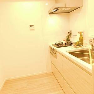 ティアラ目白アベニュー(1階,3180万円)のキッチン