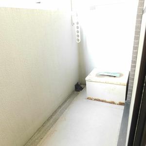 ティアラ目白アベニュー(1階,3180万円)のバルコニー