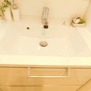 ティアラ目白アベニュー(1階,3180万円)の化粧室・脱衣所・洗面室