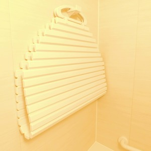 ティアラ目白アベニュー(1階,3180万円)の浴室・お風呂