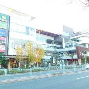 ティアラ目白アベニューの周辺の食品スーパー、コンビニなどのお買い物