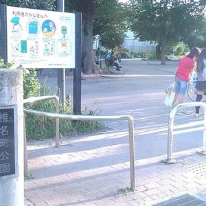 ティアラ目白アベニューの近くの公園・緑地