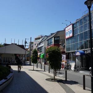 ティアラ目白アベニューの最寄りの駅周辺・街の様子