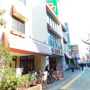 ジェイパーク渋谷東の周辺の食品スーパー、コンビニなどのお買い物