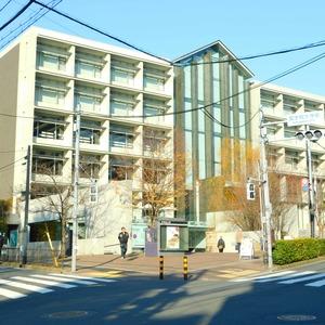 ジェイパーク渋谷東の保育園、幼稚園、学校