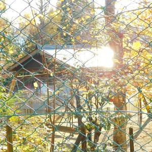 藤和渋谷常磐松ホームズの近くの公園・緑地