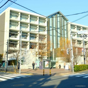 藤和渋谷常磐松ホームズの保育園、幼稚園、学校