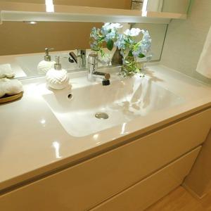 藤和渋谷常磐松ホームズ(4階,7580万円)の化粧室・脱衣所・洗面室