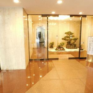 ドミール南青山のマンションの入口・エントランス