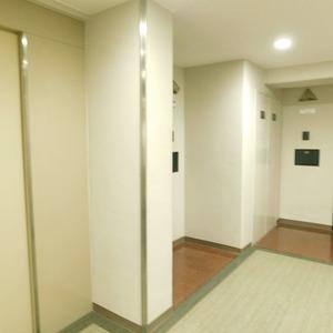 ドミール南青山(10階,9298万円)のフロア廊下(エレベーター降りてからお部屋まで)