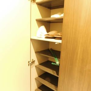 ドミール南青山(10階,9298万円)のお部屋の玄関
