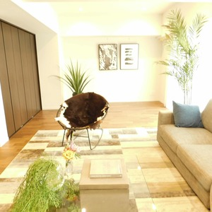 ドミール南青山(10階,9298万円)の居間(リビング・ダイニング・キッチン)