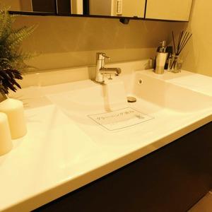 ドミール南青山(10階,9298万円)の化粧室・脱衣所・洗面室