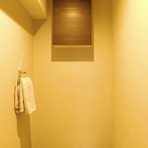 ドミール南青山(10階,9298万円)のトイレ
