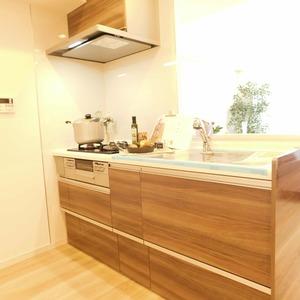 アルカディア新大塚(8階,3790万円)のキッチン