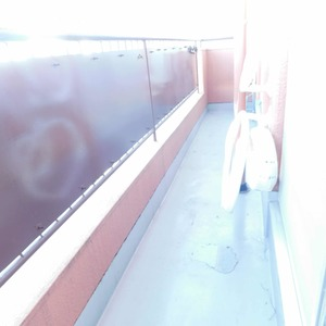 アルカディア新大塚(8階,3790万円)のバルコニー