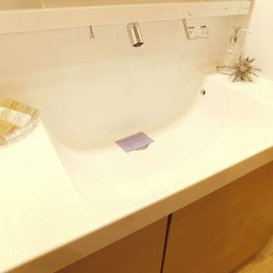 アルカディア新大塚(8階,3790万円)の化粧室・脱衣所・洗面室