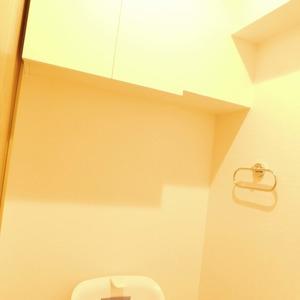 アルカディア新大塚(8階,3790万円)のトイレ