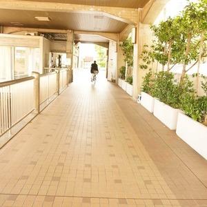 マンション雅叙苑3号棟のマンションの入口・エントランス