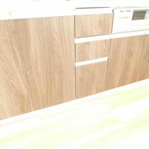 オリエンタル新大塚コーポラス(7階,3080万円)のキッチン