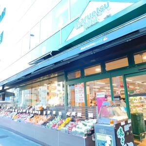 オリエンタル新大塚コーポラスの周辺の食品スーパー、コンビニなどのお買い物