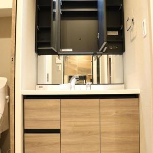 中銀東上野マンシオン(8階,)の化粧室・脱衣所・洗面室
