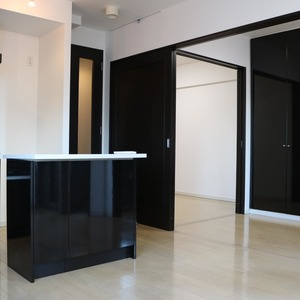 CQレジデンシャル上野(10階,3899万円)の居間(リビング・ダイニング・キッチン)