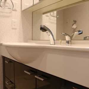 CQレジデンシャル上野(10階,3899万円)の化粧室・脱衣所・洗面室