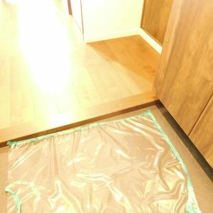 日神パレステージ西麻布(5階,5980万円)のお部屋の玄関