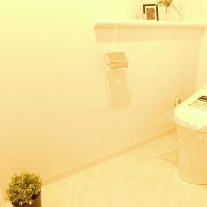 日神パレステージ西麻布(5階,5980万円)のトイレ