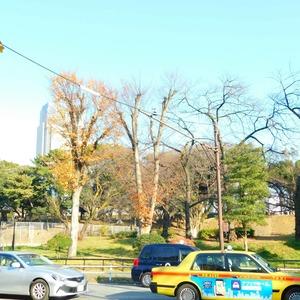 西麻布ハイツの近くの公園・緑地