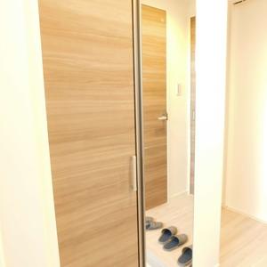 メイツ新宿なつめ坂(3階,)のお部屋の玄関