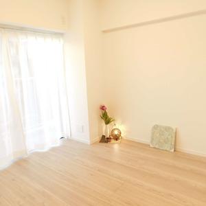 メイツ新宿なつめ坂(3階,4299万円)の洋室